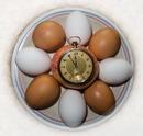 Taschen-Eieruhr