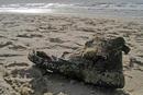 Strandschuh auf Sylt