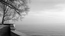 Mainau, eine Insel macht Pause