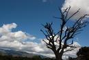 Haute Corse Landscape
