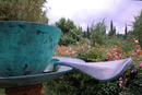 Gigant-Tasse im Spoeri-Garten