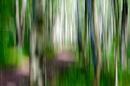 Pfad durch Grün mit Blau