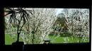 Blick in den Frühling
