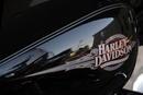 Die weite Welt der Harley