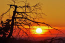 Sonnenuntergang Hohengehren