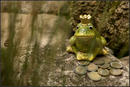 Froschkoenig mit Schatz