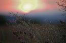Sonnenuntergang XXL