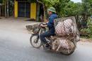 Schweintransport in Vietnam