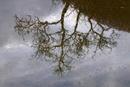 Spiegelung im Regen