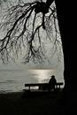 Einsam am Bodensee