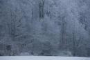 Frostsitz