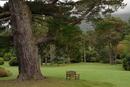 Park in Irland