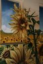 Sunflower Grafity