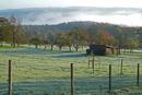 Herbstmorgen in Baltmannsweiler