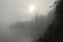 Früher Nebel am See