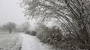 Winterstunde