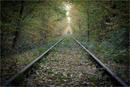 Zug nach nirgendwo