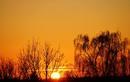 Sonnenaufgang Hohengehren