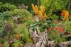 Arundel Castle Garden (2)