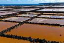 Salinen auf Lanzarote