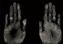 HandWerk